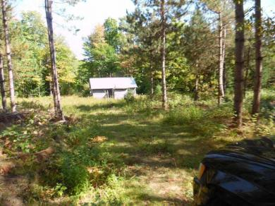 TBD Forestry Rd 2440, Rapid River, MI 49878