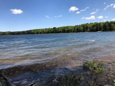 Photo of Lot 1 University Dr, Iron River, MI 49935