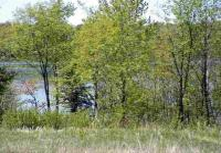 TBD Gendzwill Pcl E & F, Iron River, MI 49935