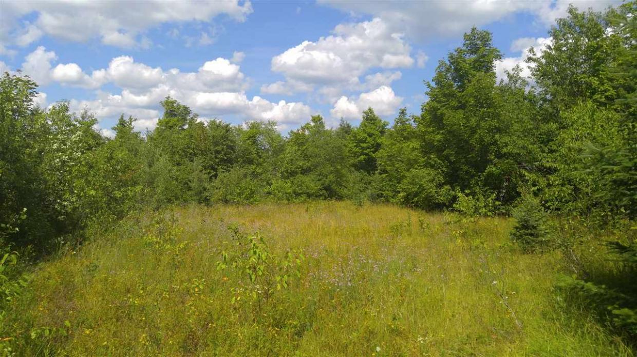 120 Acres County Line Lake, Watersmeet, MI 49969