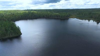 Photo of South 40 Nelligan Lake, Michigamme, MI 49861