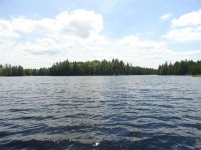 Photo of 86 Acres Thomas Lake, Michigamme, MI 49861