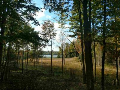 Photo of 1.4ac Wicklund Drive, Iron River, MI 49935