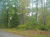 1719 River Forest, Florence, WI 54121