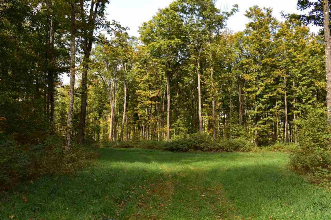 120 Acres Mastodon, Crystal Falls, MI 49920