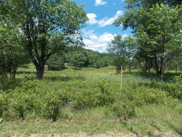 TBD Barnsdale, Florence, WI 54121