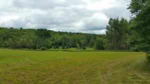 10+ac TBD Carlson's Maple Valley Addition Plat, Iron River, MI 49935