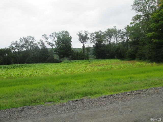 Welsh Road, Delaware, NY 12723