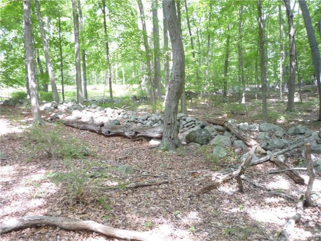 Lake Surprise Road, Philipstown, NY 10516