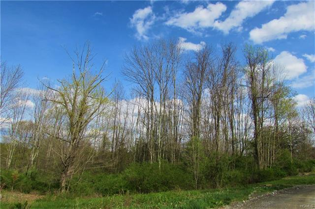 Lot 1 East Meadow Drive, Pawling, NY 12564