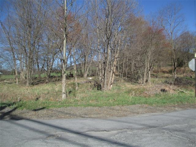 Perry Creek Road & Ivy, Blooming Grove, NY 10992