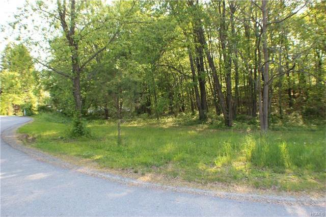56 Route 209, Deer Park, NY 12771