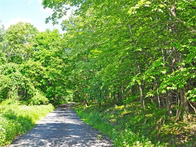 Lot 1 Alley Road, Monroe Town, NY 10950