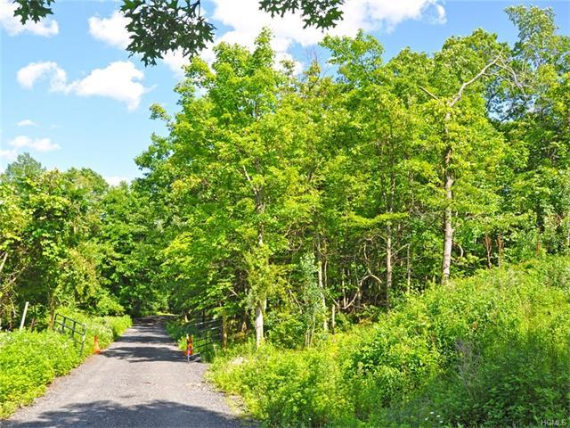 Lot 3 Alley Road, Monroe Town, NY 10950