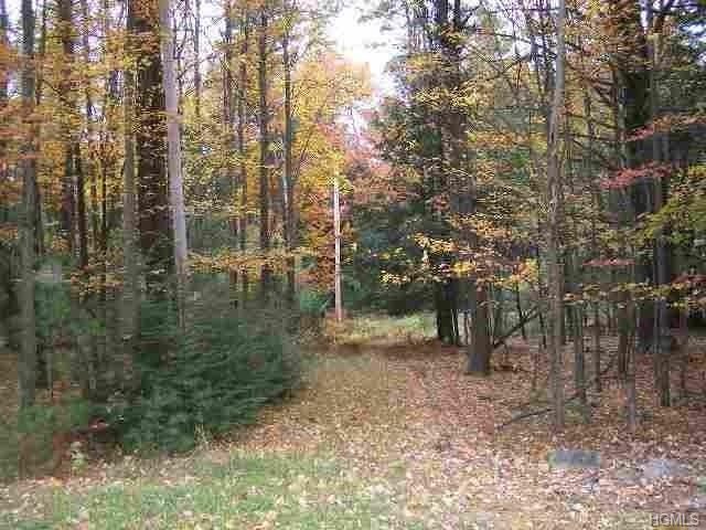 Route 42, Forestburgh, NY 12777