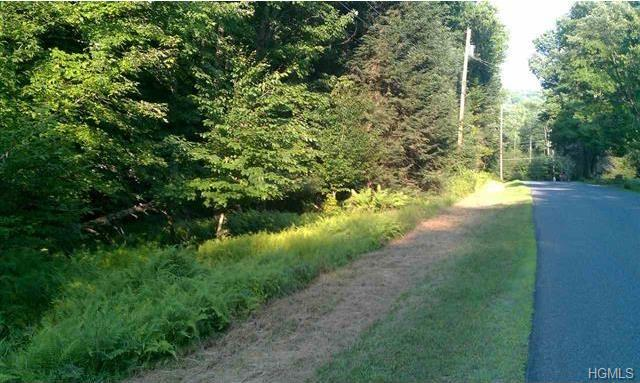 Forest Road, Neversink, NY 12740