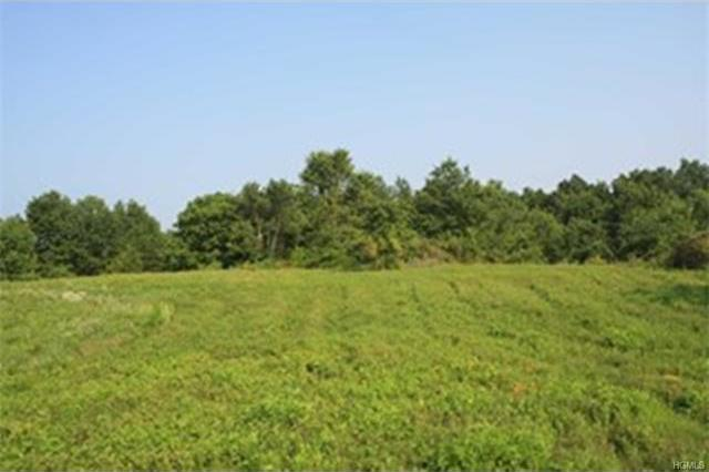 378 North Kaisertown Road, Montgomery Town, NY 12549