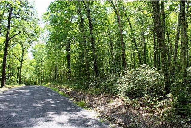 Schroon Hill Road, Rochester, NY 12446