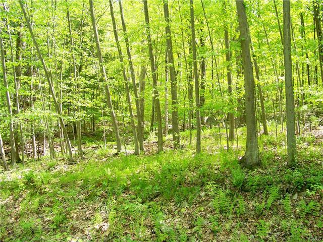 Cherry Hill, Blooming Grove, NY 10914
