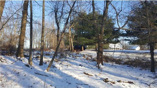 Hilltop Road, Monroe Town, NY 10950
