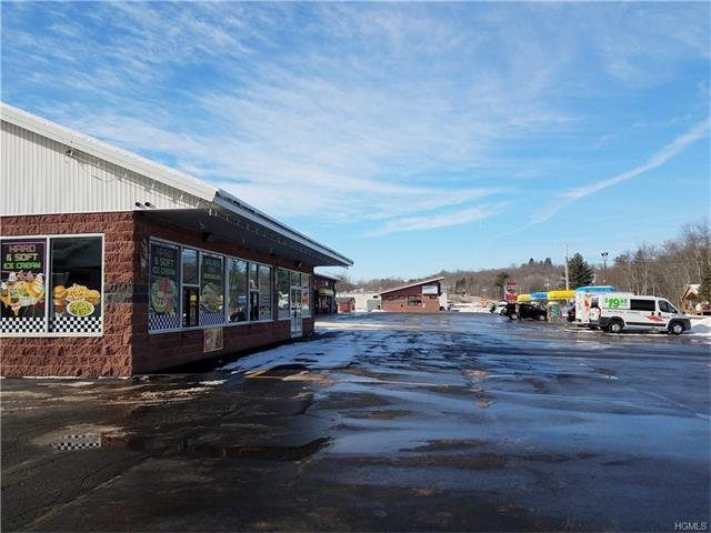 1855 State Route 52, Liberty Town, NY 12754