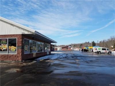 Photo of 1855 State Route 52, Liberty Town, NY 12754