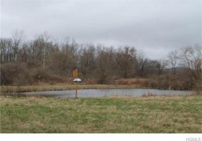 Photo of Route 22, Pawling, NY 12564