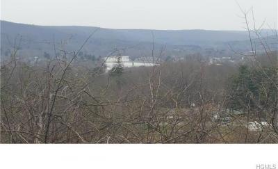Photo of 2215 Greenville Turnpike, Deer Park, NY 12771