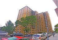 1966 Newbold Avenue #408, Bronx, NY 10472