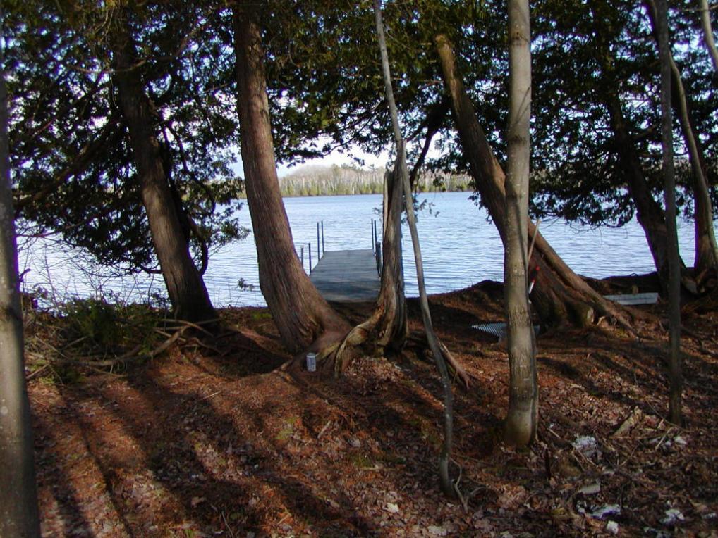 Wegwas Drive, Trout Lake, MI 49793