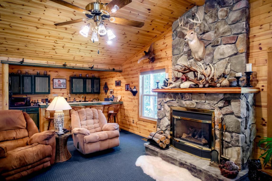 11549 White Ash Trail, Vanderbilt, MI 49795