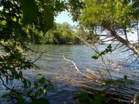 10266 W Munro Lake Drive, Levering, MI 49755