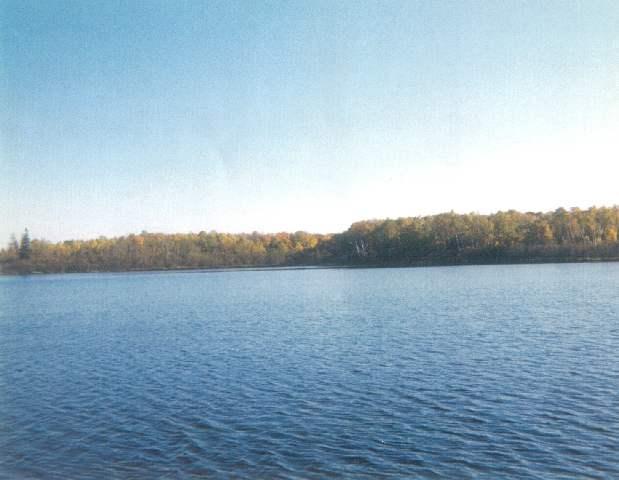 Birch Shores Drive, Trout Lake, MI 49793