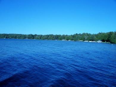 1681 N East Mullett Lake Road, Indian River, MI 49749