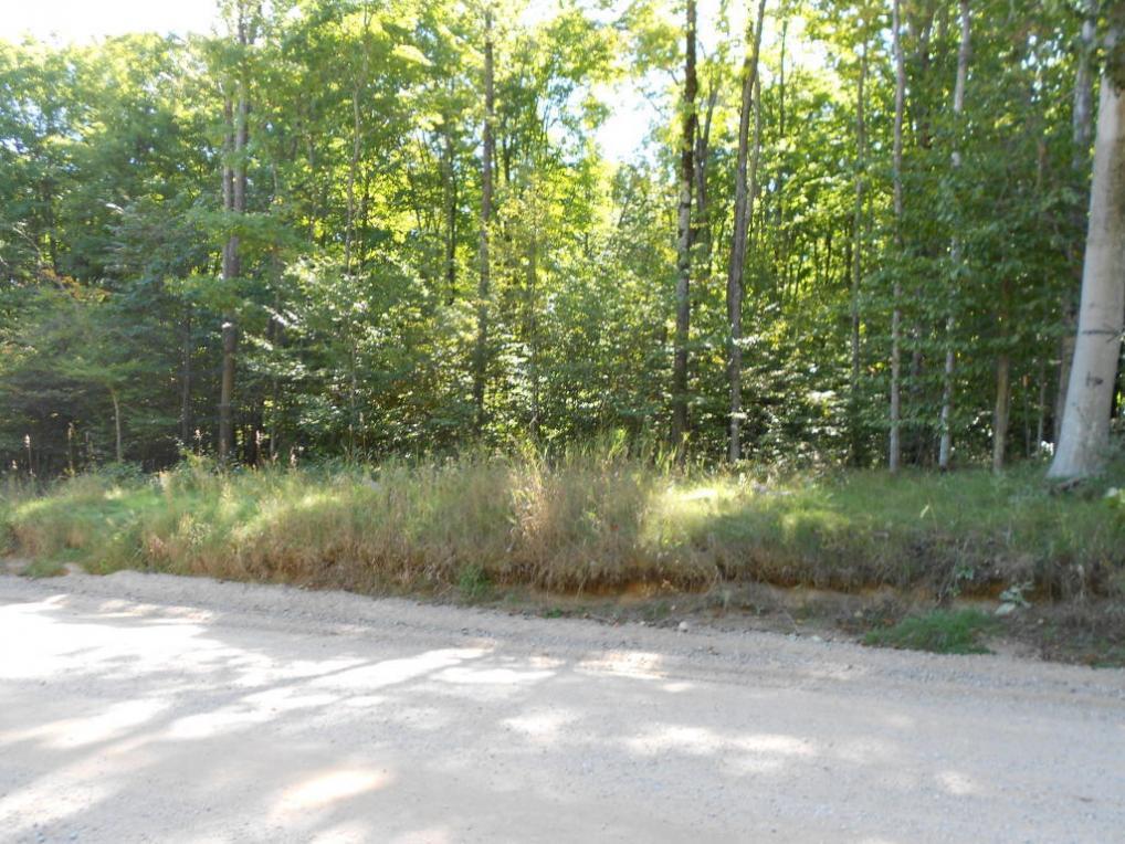 Wildwood Road, Wolverine, MI 49799