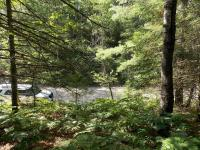 14826 Shore Line Drive, Wolverine, MI 49799