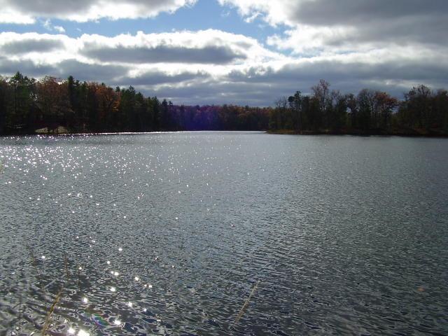 Mccollum Lake Road, Curran, MI 48728