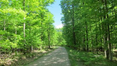 Photo of Ironwood Drive, Topinabee, MI 49791