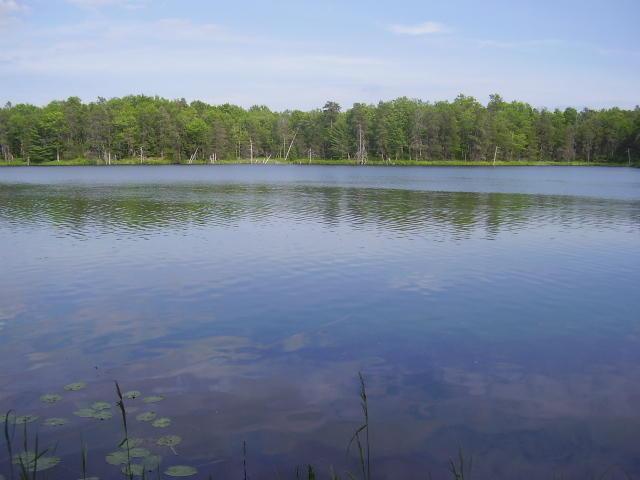 Cranberry Lake, Curran, MI 48728