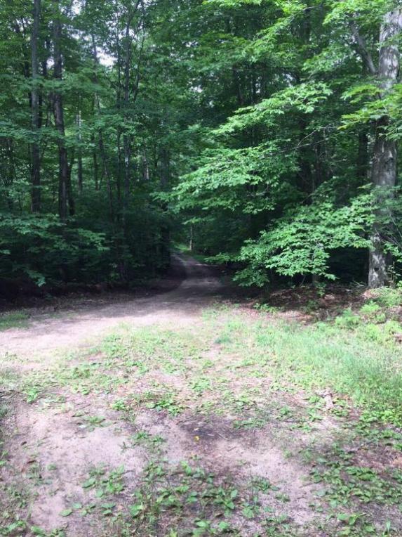 Kim Trail, Gaylord, MI 49735