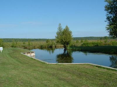 Photo of Cedar Spring Lane, Indian River, MI 49749