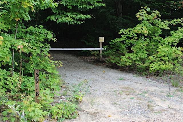 Bud & Jake Trail, Frederic, MI 49733