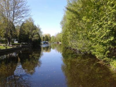 Photo of 350 Turkey Creek Trail, Indian River, MI 49749
