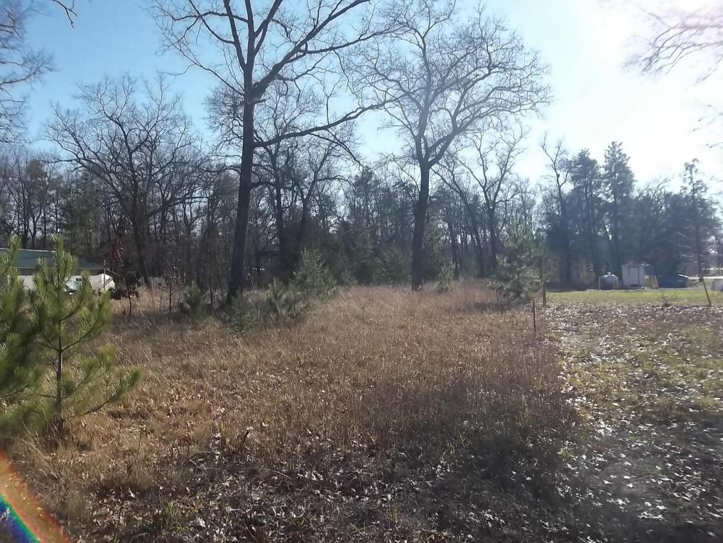 6957 Fisher Woods Road, Indian River, MI 49749