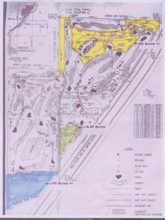 Black Bear, Vanderbilt, MI 49795