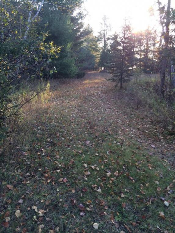 N Ridge Road, Black River, MI 48721