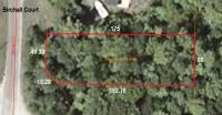 14230 Birchall Court, Cheboygan, MI 49721