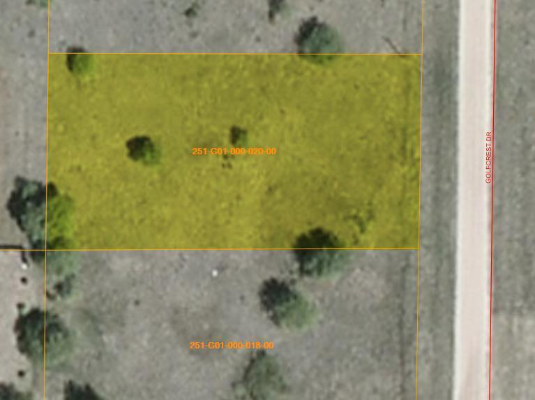 15376 Golfcrest Drive, Wolverine, MI 49799