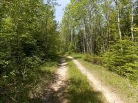 N Fork Road, Ocqueoc, MI 49759
