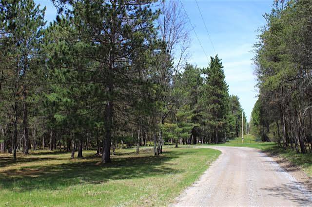 Pinewood Drive, Grayling, MI 49738